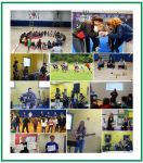 Collage of photos from Second Growth activities 2014